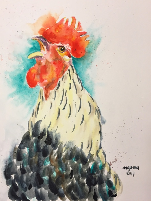 23_rooster
